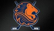 Локаут-2012. Все переходы из НХЛ в Eredivisie (Голландия)
