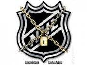 Хоккеисты НХЛ проголосовали за расформирование профсоюза